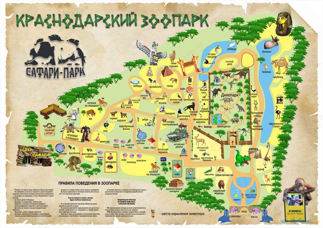краснодар парк сафари фото